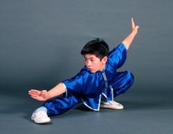 Китайское боевое искусство ушу