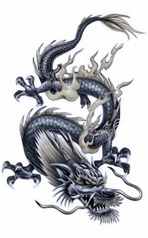 Фуцзяньский стиль ушу Лун цюань — «Кулак дракона».