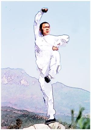 Тай-цзу-цюань - «Кулак императора Тай-цзу».