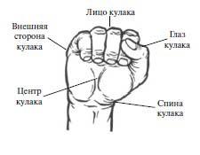 Позы рук