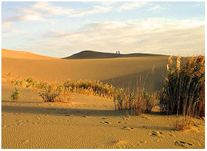 Пустыня Такла-Макан.
